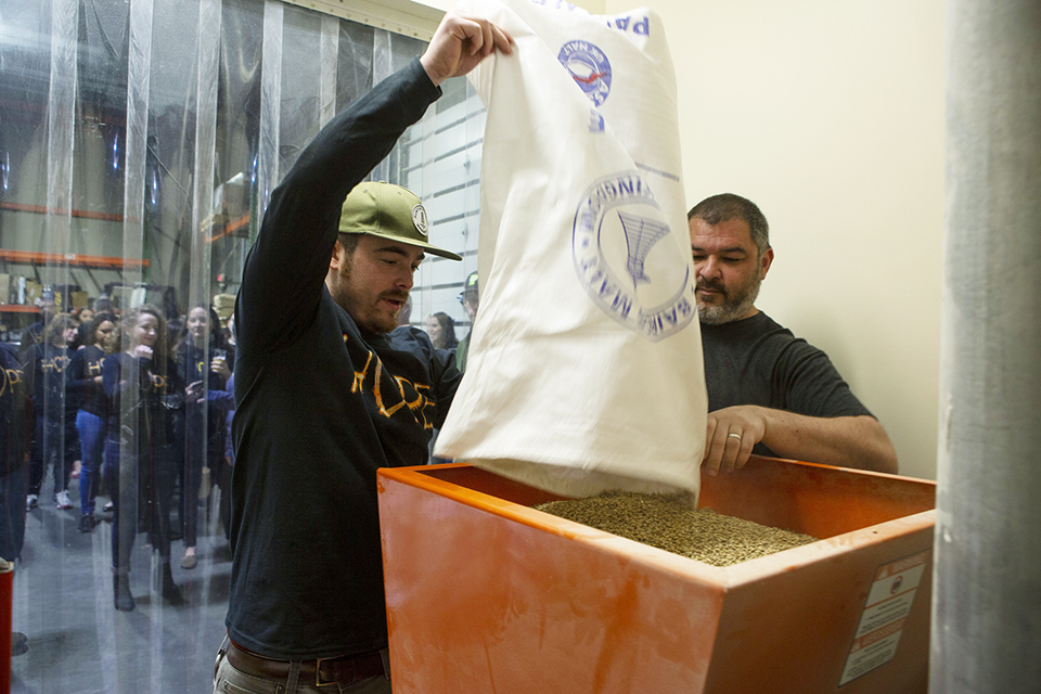 pouring barley into a processer